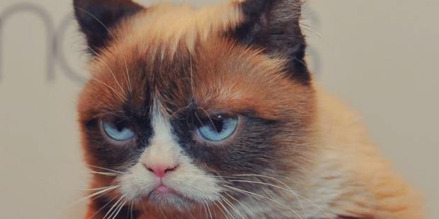 freelance-ne-pas-montrer-ses-emotions-grumpy-espritfreelance