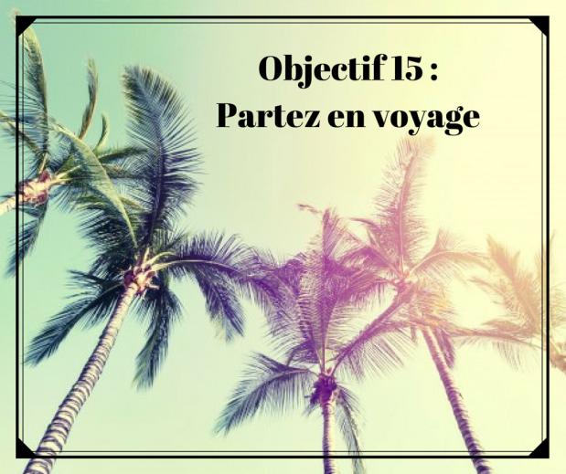 objectif-traducteur-nouvelle-annee-partir-en-voyage-esprit-freelance