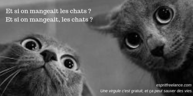 humour-virgule-correction-chats-espritfreelance
