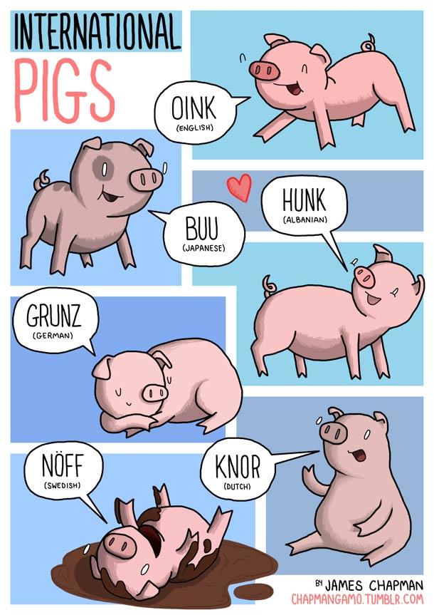 cochon-bruit-plusieurs-langues-esprit-freelance