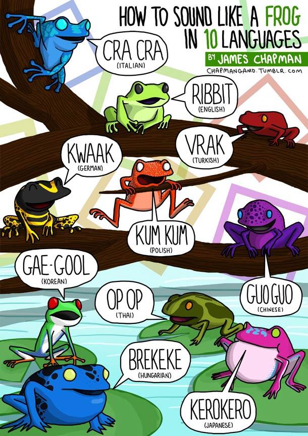 croassement-grenouille-bruit-plusieurs-langues-esprit-freelance.jpg
